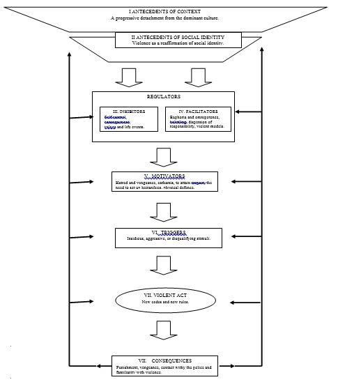 Figure 1: General model of the social representation of juvenile violence